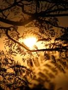 Sunrise - Sungabala